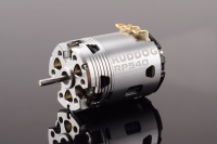 Ruddog Products 0155 - RP540 Fixed-Timing - Brushless Motor - 17.5T - KleinSerie GT-Sport / VTA