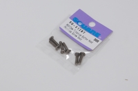 Square Titanscrew M3 Button-Head M3x12mm JIS Plus Head (+) (6 pcs.)